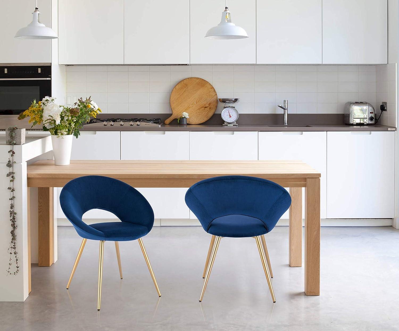 WOLTU 1 X Chaise de Salle à Manger Chaise de Loisirs en Velours et métal,Rose BH230rs-1 Bleu