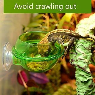Zantec Cuenco antifuga, Recipiente de Comida VIVI para Lagarto camaleón Reptil