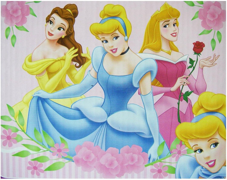 Disney Prinzessin Plüsch Decke - Prinzessin Decke 100cm x 127cm (B...
