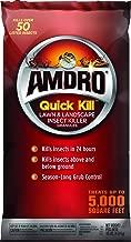 Amdro Quick Kill Lawn & Landscape Insect Killer Granules 10lb
