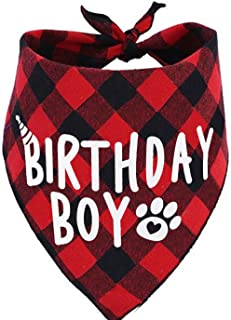 JPB Birthday Boy Dog Bandana