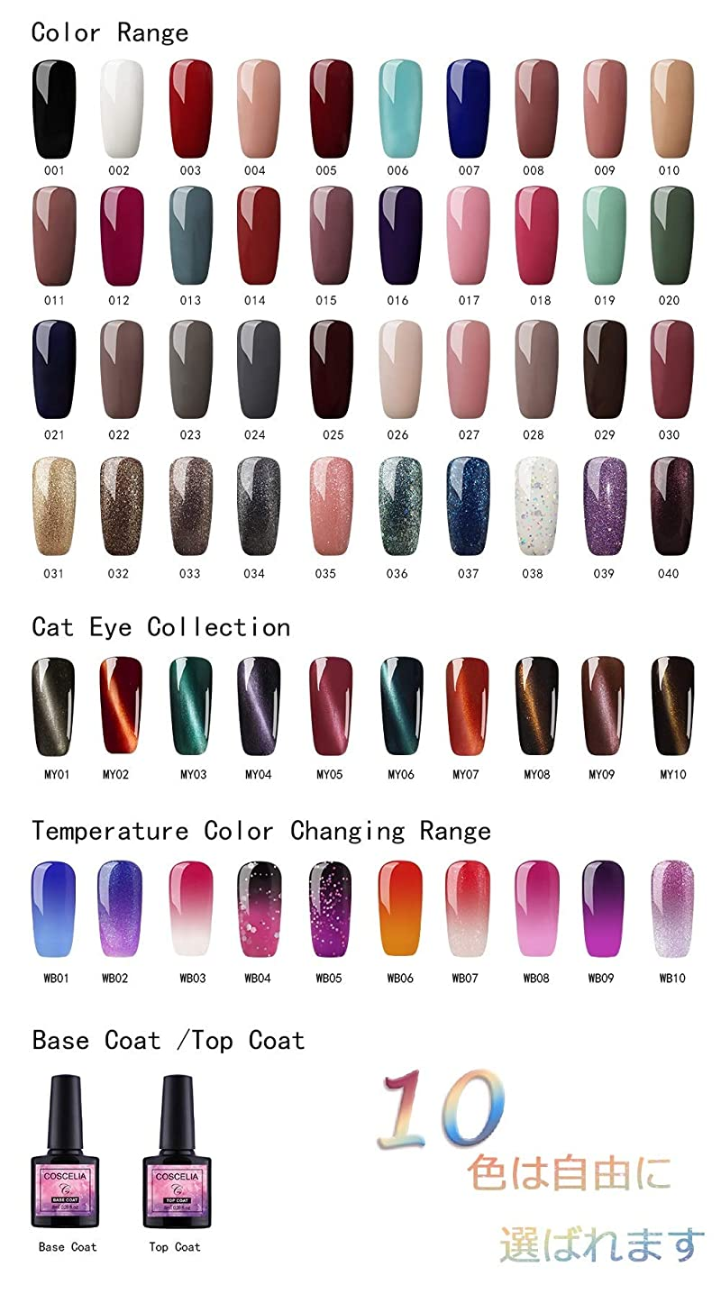 虚弱延期する鬼ごっこTwinkle Store カラージェル 10色套装 完璧なセット 8ml キャットアイジェルキット カメレオンカラージェルセット  ジェルネイルカラー UV/LED 适用 ネイルアートジェルで簡単に DIY 下の色で10ボトルを自由に選ぶことができる(トップコートとベースコートを含む)