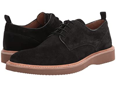 Steve Madden Voyage Shoe (Black Suede) Men