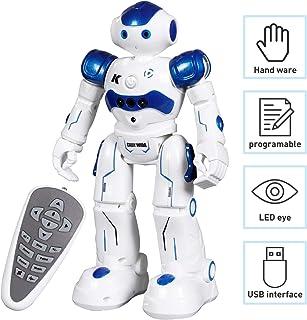 Robot Toys Amazon