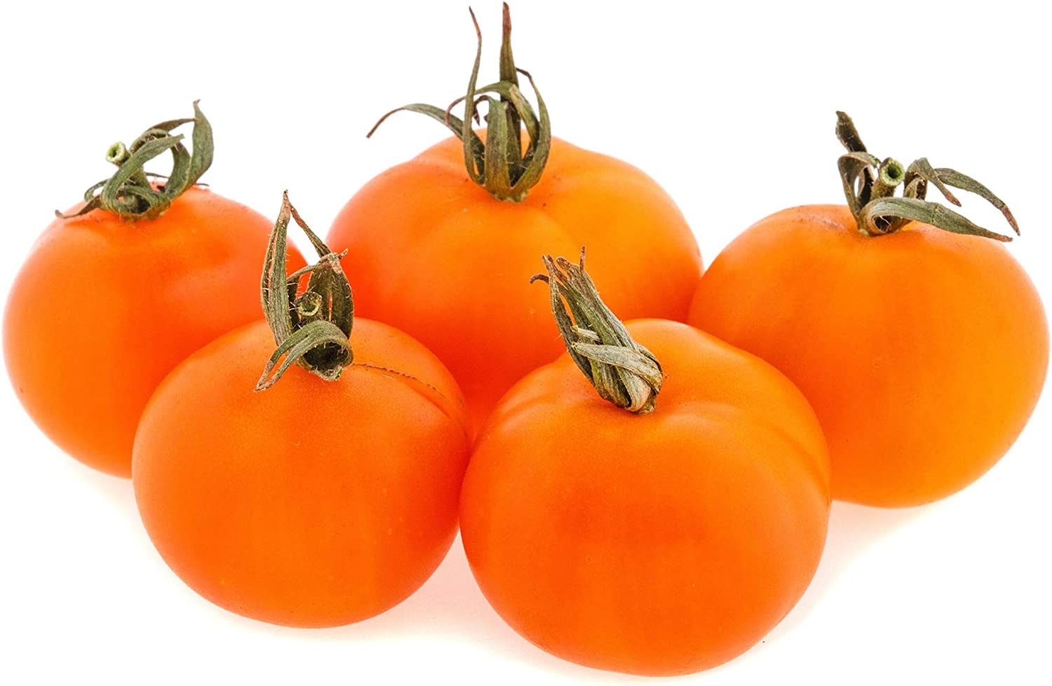 lowest price Tomato Seeds - Cherry Orange 4 lyco 000 Solanum Our shop OFFers the best service ~40 Oz