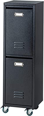 AZUMAYA ダストボックス ラルド ブラック TPN-36BK 幅28×奥行き26.5×高さ95(cm)