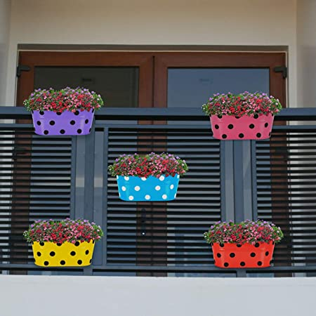 TRENDY HOME Black Polka Dotted 'Oval Shape' Railing Metal planters Hanging Flower Pot for Balcony/Home/Garden/Terrace Decoration (Pack of 8) Multicolor