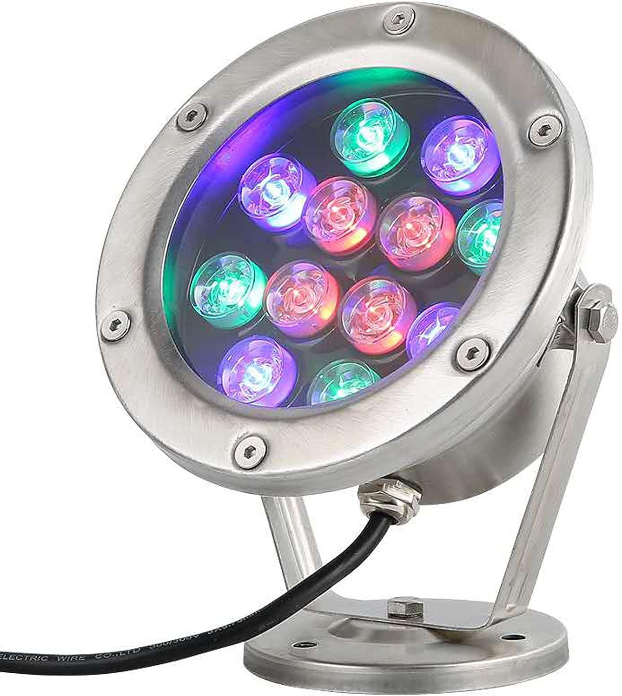 AMDHJ Stainless New life Steel Underwater New product Spotlight LED Light Pond I 12W