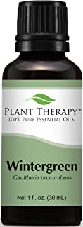 Plant Therapy Wintergreen Essential Oil 30 mL (1 oz) 100% Pure, Undiluted, Therapeutic Grade