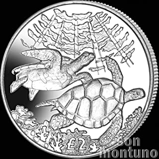GREEN SEA TURTLE - 2017 British Indian Ocean Territory £2 Uncirculated Cupro Nickel Coin - Limited Mintage of Only 10,000 Pieces