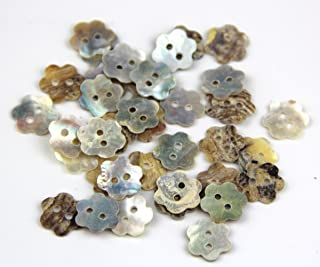 Best shell buttons for sale Reviews