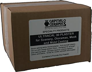 Ultracal 30 Plaster for Mold Casting, Scenery, Dioramas, and Dentistry 5 lb Pack Resealable Bag Great for Model Making & Gaming by Capital Ceramics