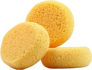 Sponge - Antibacterial 3 Pieces