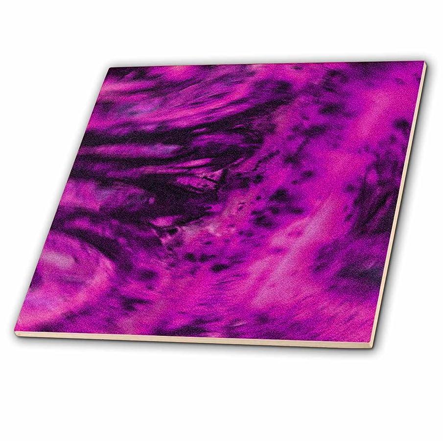 3dRose ct_20653_2 Purple Pink Scroll Ceramic Tile, 6-Inch