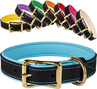 Best leather brass dog collar Reviews