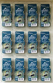 72 Glade Warm Flannel Embrace Wax Melts 12 Packages - Fern Sandalwood Cardamom