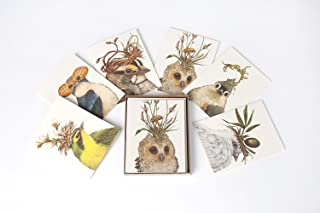 The Pencil Factory Vicki Sawyer Boxed Card Set of 6