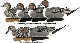 Avery Greenhead Gear Pro-Grade Duck Decoy,Pintails,1/2 Dozen