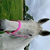 FORFURS Classic Horse headcollar//Halter