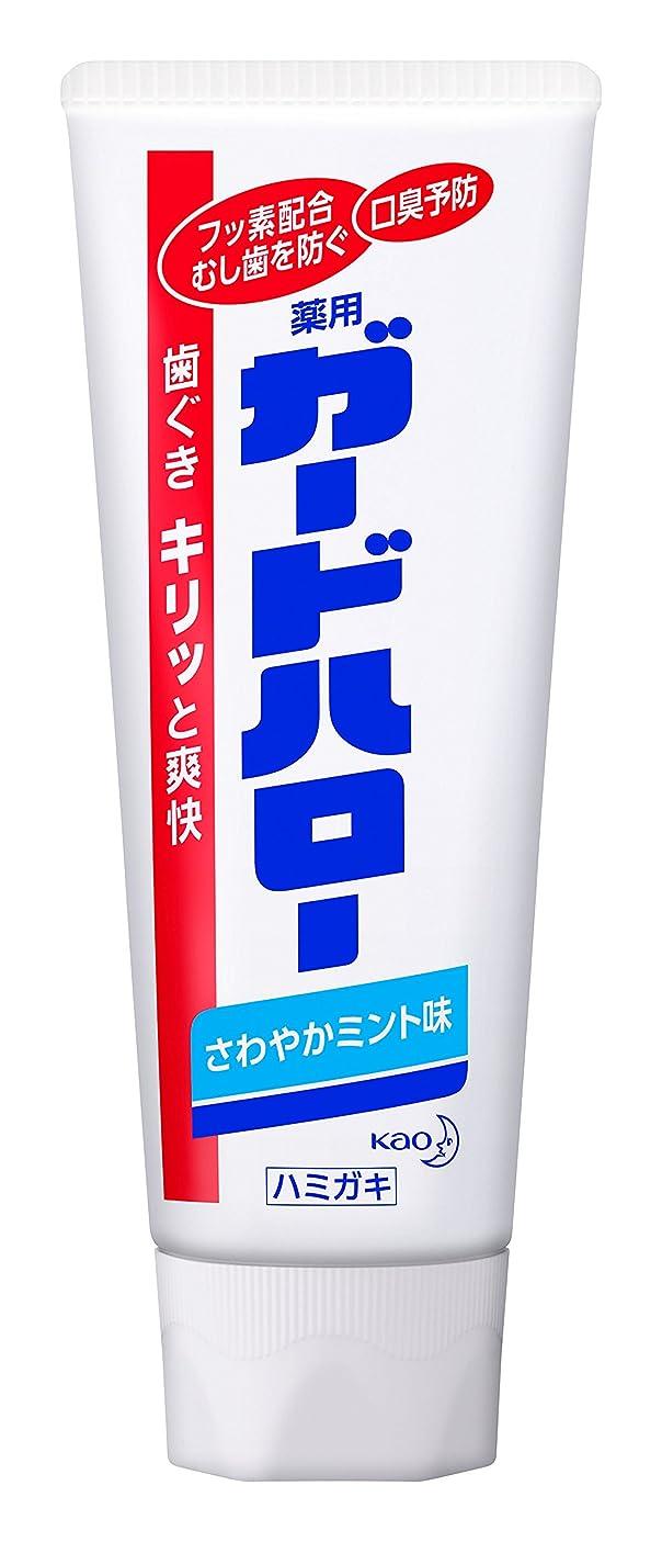 訪問松図書館【花王】ガードハロー スタンディング (165g) ×10個セット