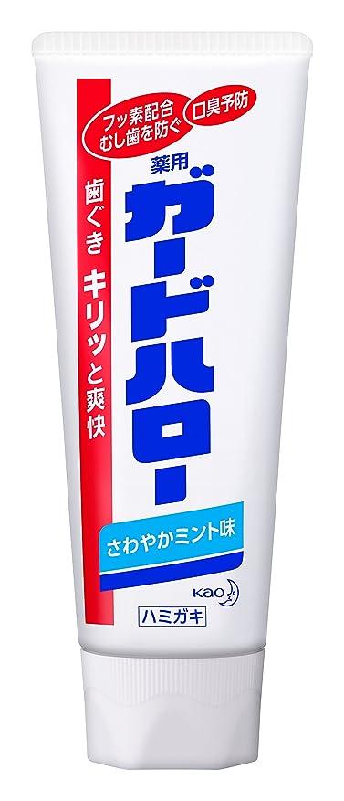 うめきテレビ性格【花王】ガードハロー スタンディング (165g) ×10個セット