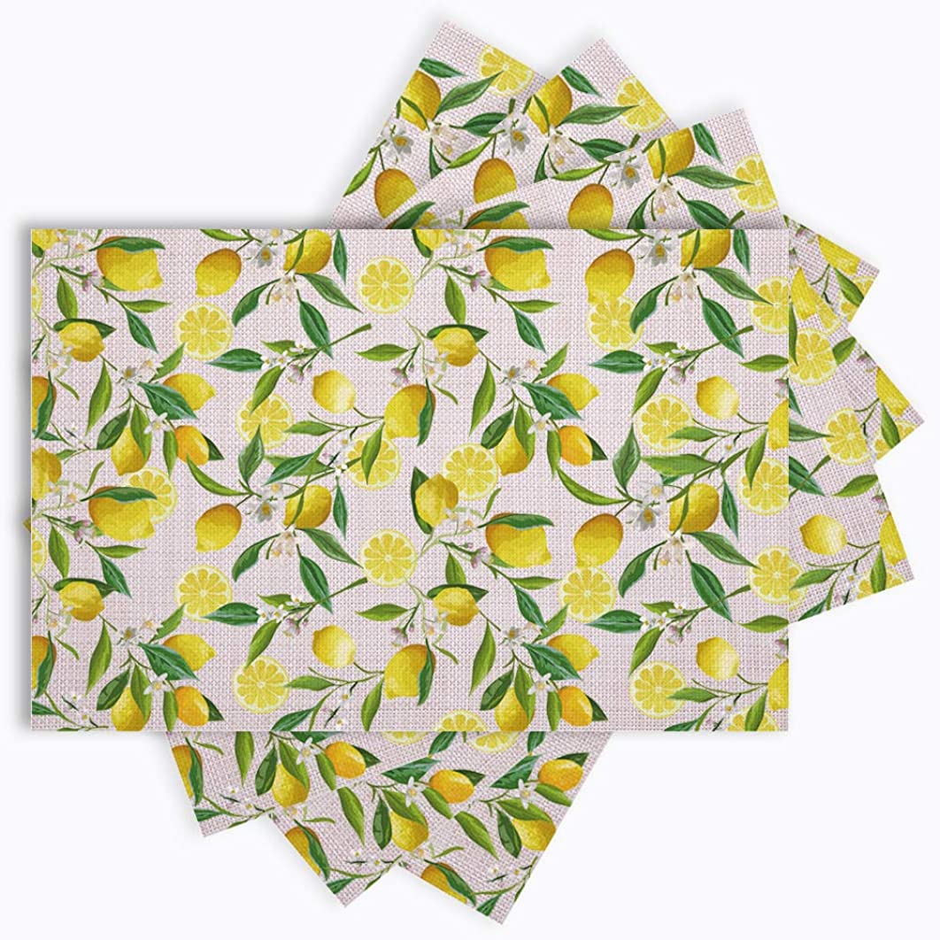 JOYLAND Set of 4 Woven Non-Slip Insulation Placemats for Dining Table,Kitchen Place Mats Coffee Mats Heat-Resistant Jacquard Weave Table Mats Friuts 12 x 18 inch (Lemon 2)