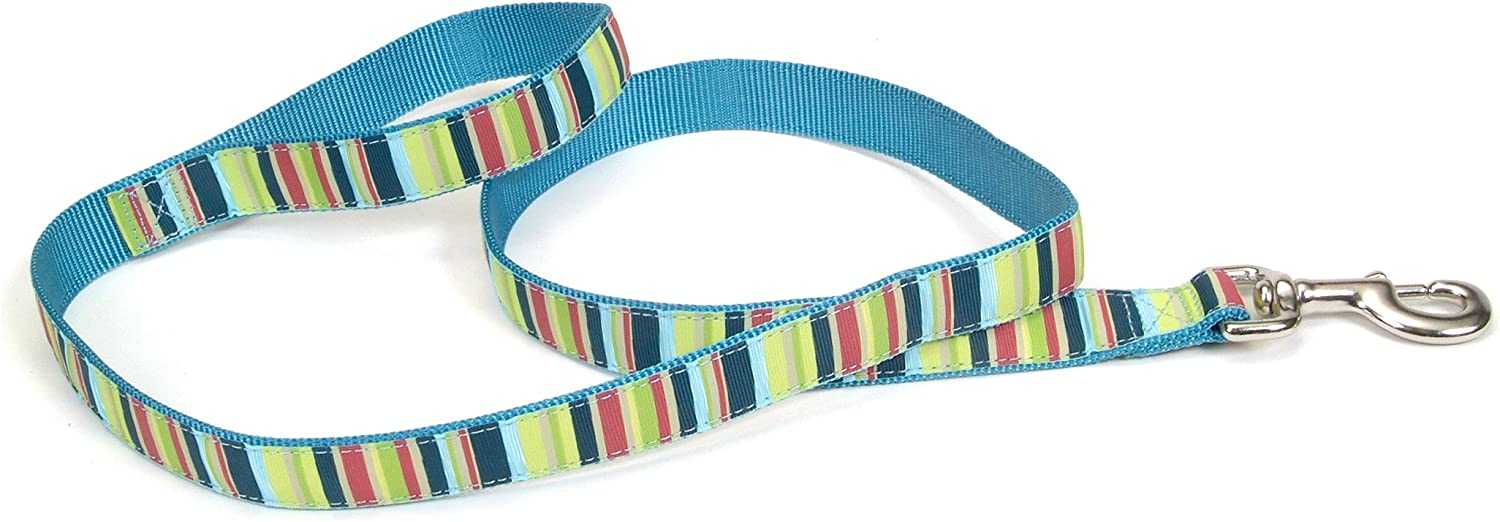 Pet Attire Ribbon Leash, 6Foot, Multistripe