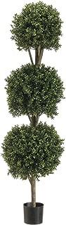 Silk Dcor 1 5'TRI Ball Boxwood TOP.(P) GRTT Greenery, 60-in, Two Tone Green