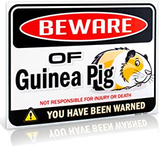 Bigtime Signs Beware of Guinea Pig Warning Sign - 9 inch x 12 inch - Danger Sign Funny Gag Gifts for Window, Office, Bedroom Decor, lockers - Corrugated Plastic for Indoor or Outdoor Use
