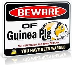 beware of the guinea pig