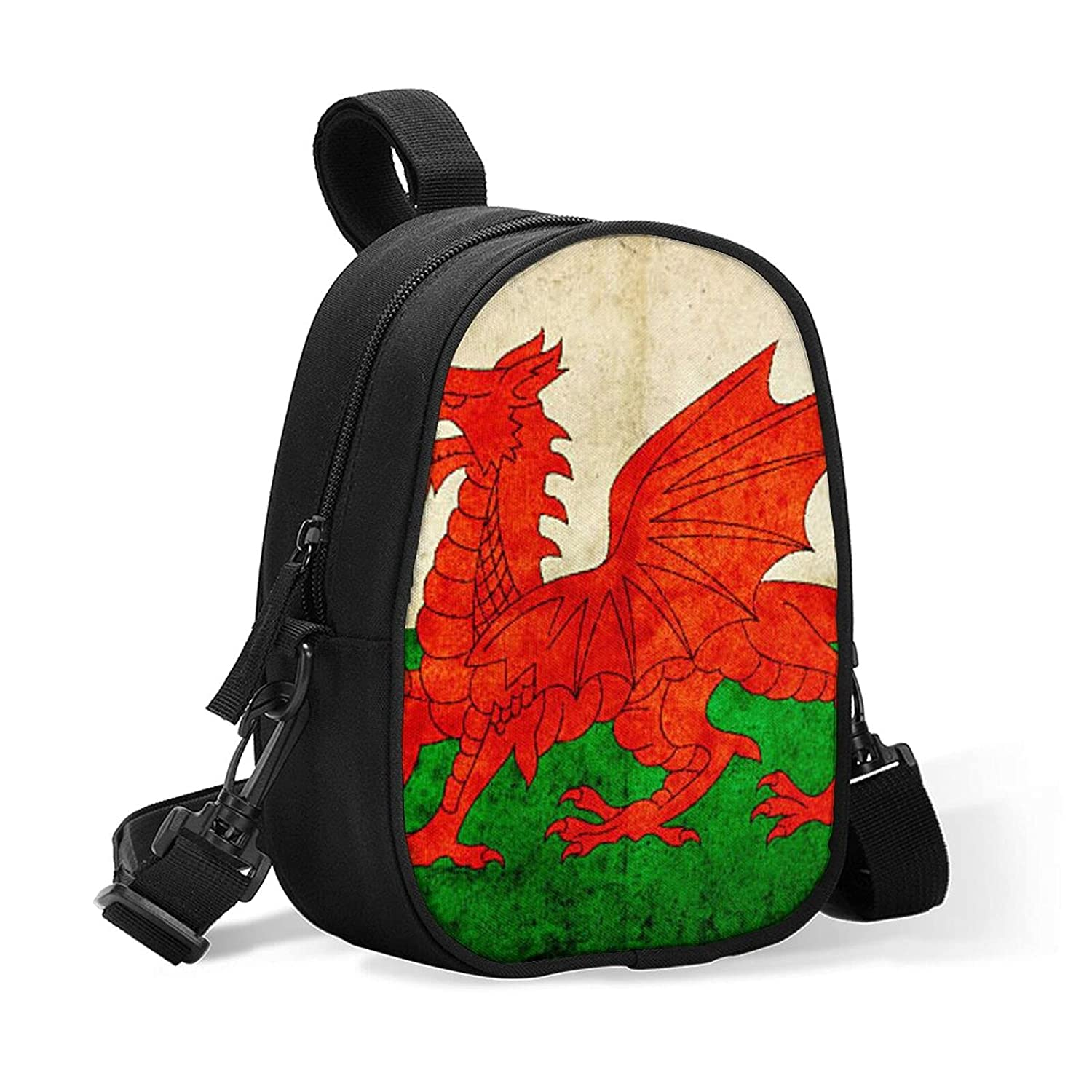 Insulated Baby Bottle At the price of Austin Mall surprise Cooler Bag Grunge Welsh for Lunch Flag