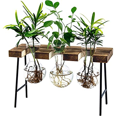 Hyindoor Bulb Vase With Vintage Wooden Stand And Metal Rotating Rod For Hydroponics Propagation Station Plants Desktop Glass Planter For Home Decoration Garden Outdoor