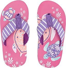 32b53c375 Pretty Sea Turtles. Hatley Kids. Limited Edition Flip-Flop (Toddler Little  Kid)