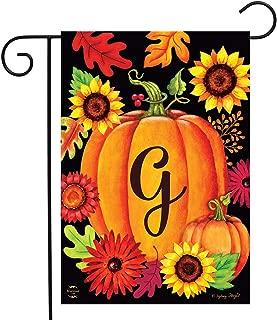 Briarwood Lane Fall Pumpkin Monogram Letter G Garden Flag 12.5