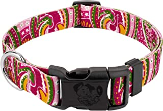 Country Brook Design - Deluxe Dog Collar - Paisley Collection