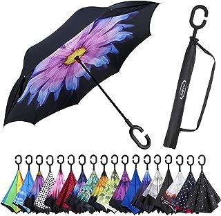 purple daisy umbrella