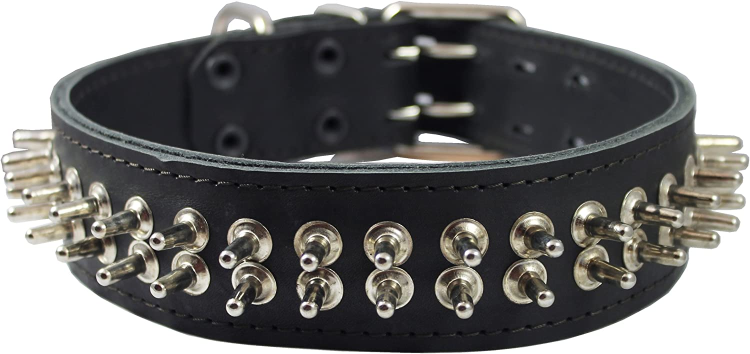 2  wide Thick Latigo Real Leather Spiked Dog Collar Sized to Fit 18 22  Neck. Cane Corso, redtweiler, Pitbull