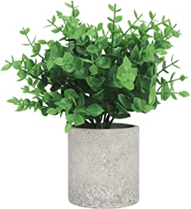 FYY Mini Artificial Potted Plants, Small Fake Plants Artificial Plastic Eucalyptus Plants for Home Office Desk Greenery Decoration Indoor