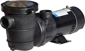 doheny above ground pool pump