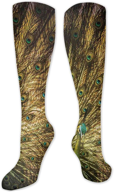 Best Compression Socks Women Men Minneapolis Mall Portrait Inexpensive Hg Stockings Knee High