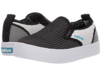 Native Kids Shoes Miles 2.0 Liteknit (Toddler/Little Kid) (Jiffy Black/Shell White/Dublin Grey) Kid