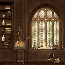 LFEEY 8x8ft Magic Library Photo Backdrop Fantasy Luxury Home Magical Book Retro Arch Window Study Castle Interior Photography Background Photo Studio Props