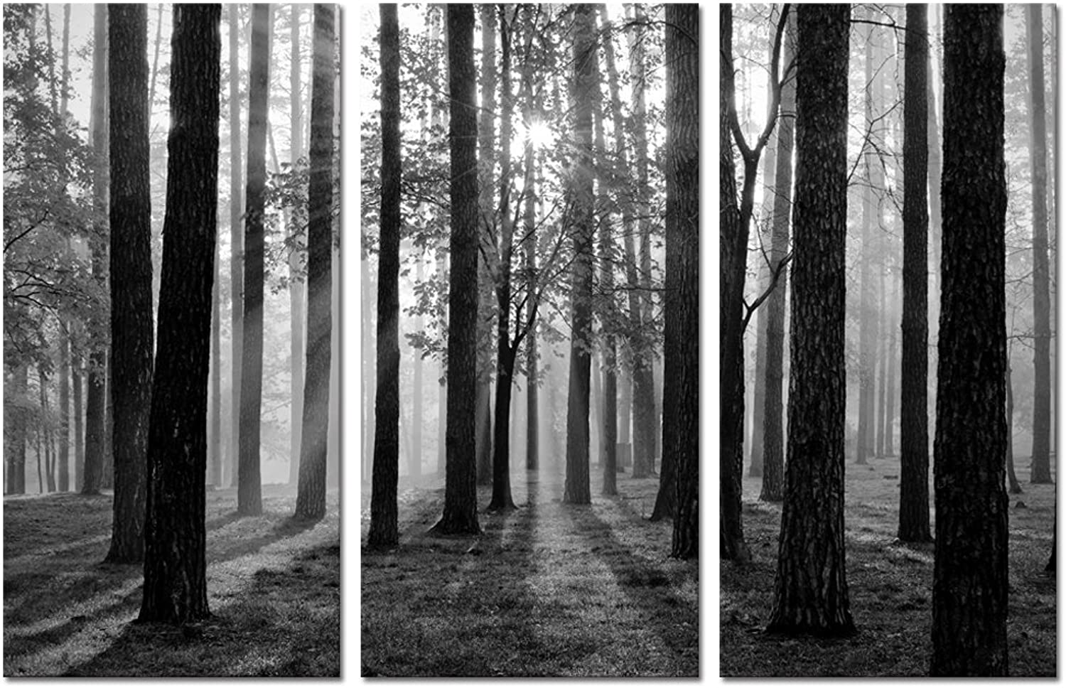 Black and White Landscape Canvas Wall Art,Modern Wall Art,Nature Picture Art,Canvas Prints,Oil Painting,Autumn Forest Wall Decor,Wall Decoration (Foggy Forest)