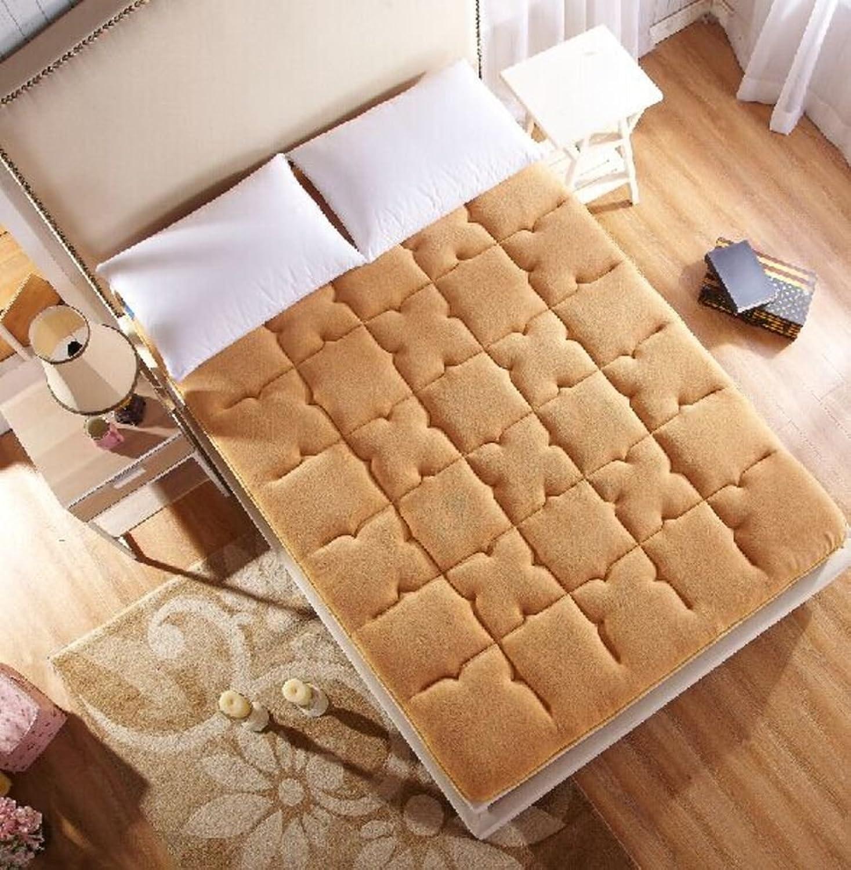 Premium Hypoallergenic Mattress pad,Padded Mattress Bed,Tatami mat Simmons Floor Plush Bed Mattress,Predector-B 100x200cm(39x79inch)