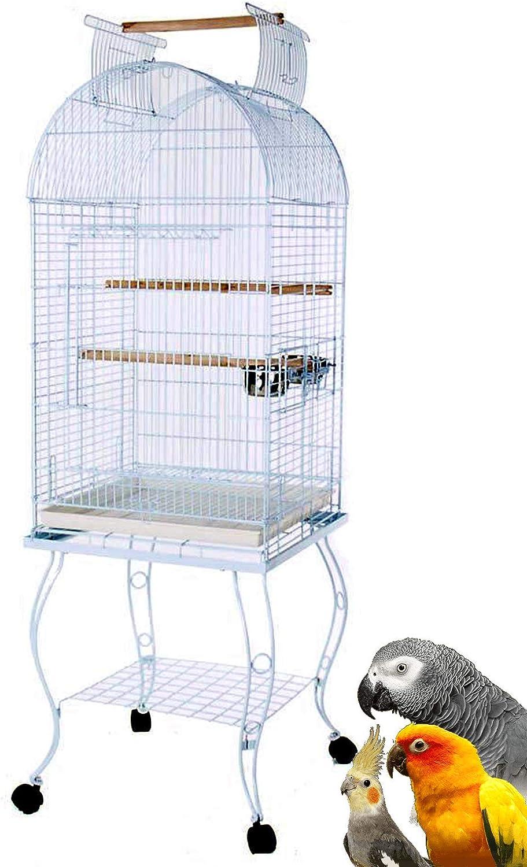 Mcage Bird Parrot Cage Cockatiel Mail Max 83% OFF order African Amazon Caique Conu Grey