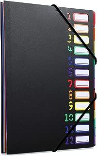 ドキュメントファイル クリアファイル A4 24個ポケット ファイルケース 書類ケース 持ち運び