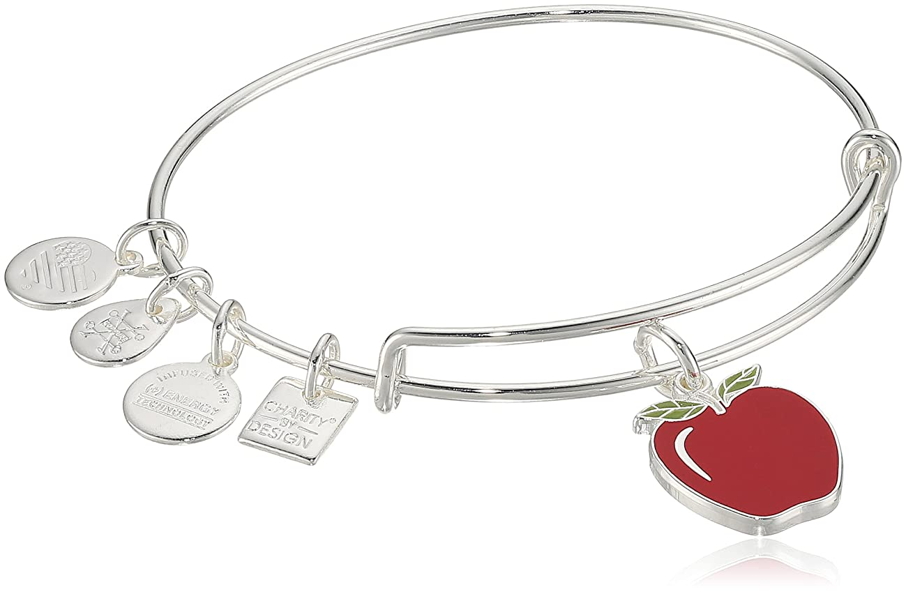 Alex and Ani Charity by Design, Apple EWB, Bangle Bracelet