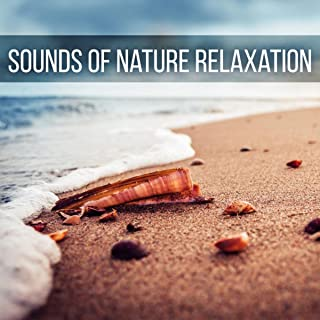 Sounds of Nature Relaxation – Mind and Body Harmony, Sensual Massage Music for Aromatherapy, Music for Healing Through Sound and Touch, Relaxing Background Music for Spa, Yoga & Meditation