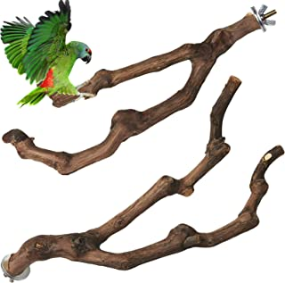 PINVNBY Natural Parrot Perch Bird Grape Standing Pole Stick Wild Paw Grinding Fork Parakeet Climbing Branches Toy Chewable...