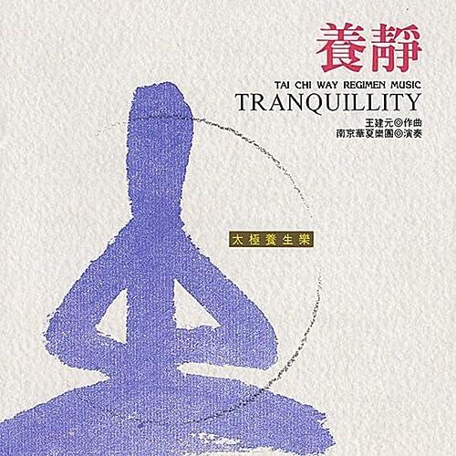 Tai Chi Way Regimen Music